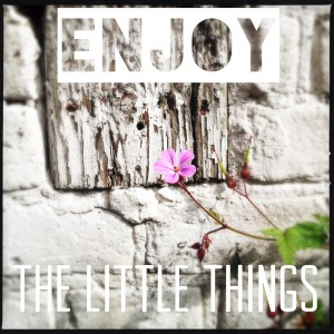 130705 Enjoy the little things