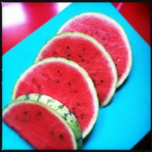 130813 watermeloen