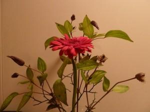 131231 bloemen